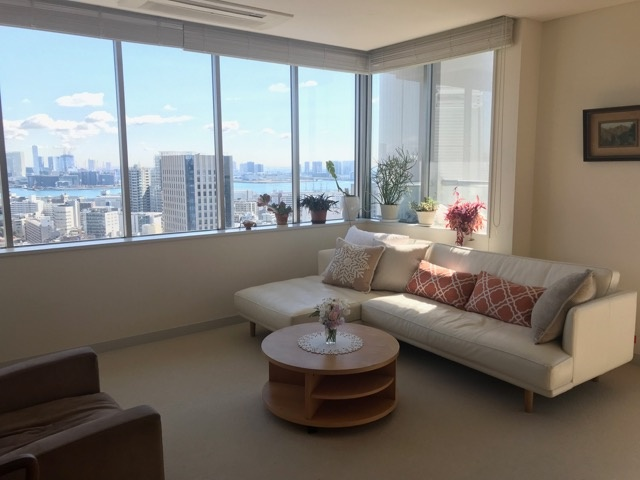 Bay view central Tokyo penthouse